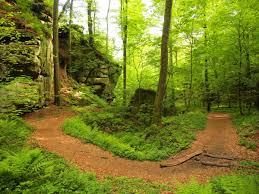 hiking the mullerthal trail u2013 willem vandoorne u0027s travel log