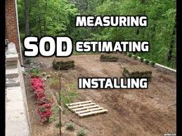 Sod Estimate by Best 20 Sod Installation Ideas On No Signup Required