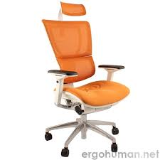 desk chair with headrest mirus mesh office chair with headrest and white frame ergohuman