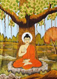 the sacred bodhi tree