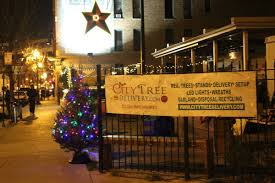 award winning fraser fir christmas trees in chicago city tree delivery