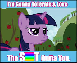 20 Cooler Meme - twilight s ultimate guide to the mlp fandom mylittlepony
