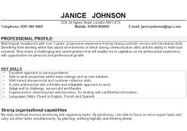 3 Types Of Resumes Cv Professional Profile Examples Uk Types Of Resumes For Job