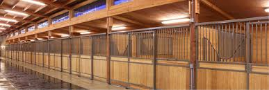 how big should a horse stall be equestrian barns u0026 architecture