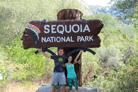 sequoia national park alta peak sequoia hikes southern