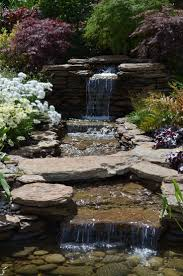 backyard grill climax nc 18 best watery garden images on pinterest backyard ponds fish