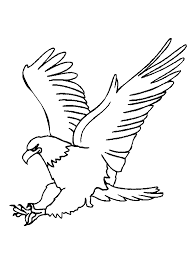 bald eagle coloring pages for kids 3 coloringstar
