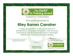 about the daisy in training award the daisy foundation