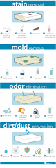 how to clean how to clean a mattress sleepopolis