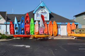 outer banks pets guide outerbanks com