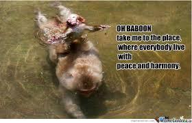 Baboon Meme - oh baboon by klemenjero meme center