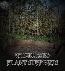 d i y or die spider web plant supports flora gothica