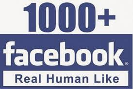 facebook fan page followers buy cheap facebook services page likes followers accounts marketing