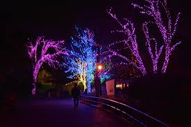 national zoo christmas lights zoolights at the national zoo kid trips family travel virginia