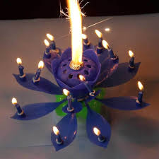 amazing birthday candle lotus birthday candles musical birthday candles sparkling
