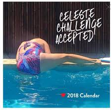 calendars for sale celeste barber 2018 calendars and diaries now on sale