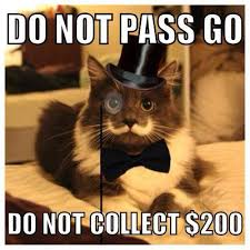 Handlebar Mustache Meme - meet hamilton the hipster cat the kitty with the perfect