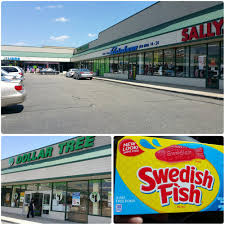 dollar tree discount store 646 stewart ave garden city ny