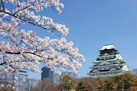 celebrate japan u0027s cherry blossom festival on an iconic event