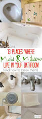 Mold Smell In Bathroom How To Clean Mold And Mildew In The Bathroom Without Scrubbing