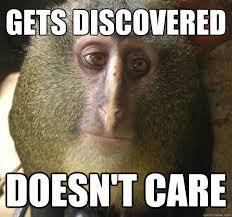 Ape Meme - apathetic ape memes quickmeme