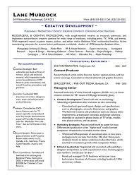 Resume Preparation Online by Professional Resume Writing Jvwithmenow Com