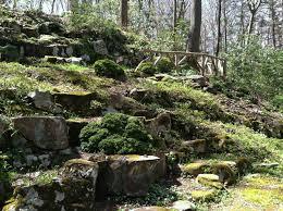 Rock Gardens Images by Field Trip Leonard J Buck Garden Miss Rumphius U0027 Rules