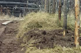 building soil u2013 a really small farm