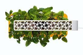 Click And Grow Refills Click U0026 Grow Indoor Smart Herb Garden Kit With 3 Basil Cartridges