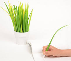 Small Desk Plants Pooleaf Pen Doubles As Decorative Indoor Plant