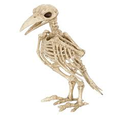 aliexpress com buy 2016 sale skeleton raven100 plastic
