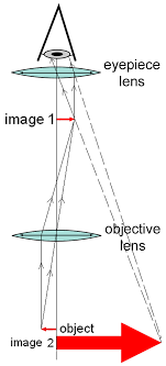 compound light microscope function what is a simple compound microscope how does it function quora