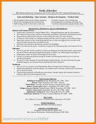 resume computer skills sles skills sales associate zoro blaszczak co
