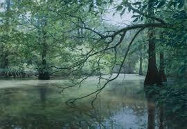 Mississippi forest images Artwork by philip juras delta bayou delta national forest jpg