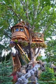 treehousefriday mindbending silver maple treehouse u2014 nelson treehouse
