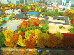Autumn Colors Sit Sip And See Deoksugung Palace In Autumn Colors Korea Blog