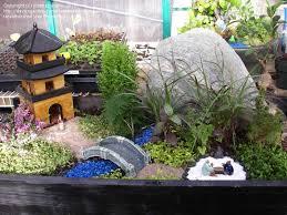 Mini Rock Garden Mini Japanese Garden Design Ideas And Photos
