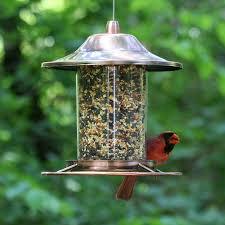 cardinal bird home decor amazon com perky pet copper panorama bird feeder 312c wild