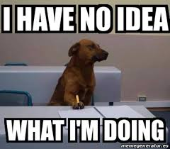 Chemistry Dog Meme - image 234739 i have no idea what i m doing know your meme