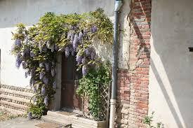 chambre d hote chatillon sur chalaronne chambre d hote chatillon sur chalaronne ain le vieux saule gatronomie