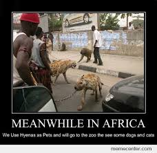 Africa Meme - meanwhile in africa by ben meme center