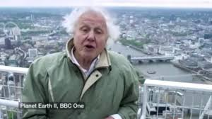 planet earth iii could happen but sir david attenborough will be