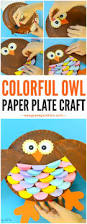 colorful paper plate owl craft idea kindergarten owl and paper