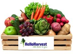 fruits delivery 34 for two separate weeks of home delivery of organic fruits and