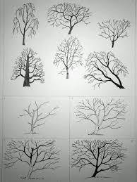 drawing trees tutorial 0 photo art curriculum pinterest tree