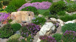 easy gardening tricks of the trade high country gardens the