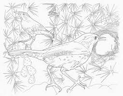 complex animal coloring pages 25705 bestofcoloring com
