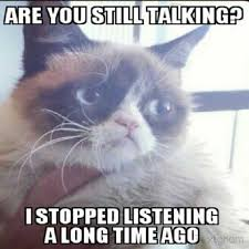 Mean Cat Meme - funny grumpy cat images pictures photos quotes and funny page 9