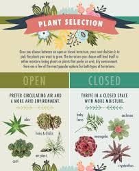 terrariums open vs closed u2013 46 u0026 spruce home and garden