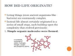 b tech biotech i bls u 1 2 theories of origin of